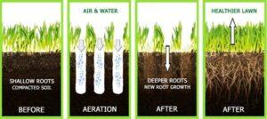 aeration infographic